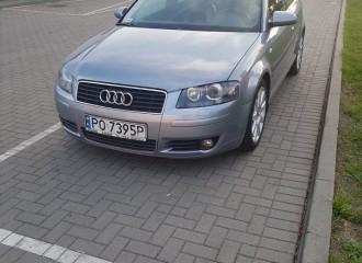 Audi A3 8P - Cena ustawienia zbieżności kół