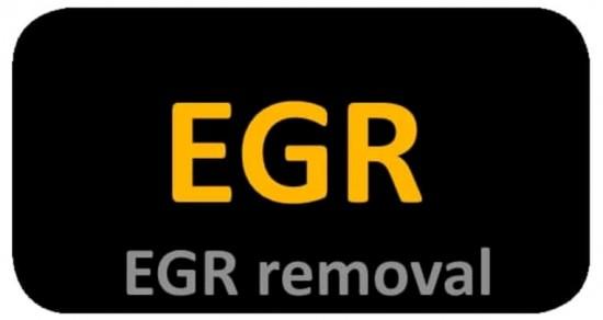 Egr remover