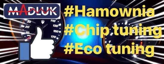 HAMOWNIA CHIP TUNING