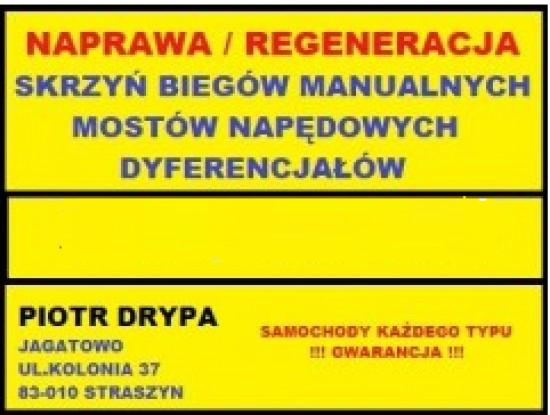 Naprawa skrzyń biegów, mostów napędowych, dyfrów PIOTR DRYPA Gdańsk