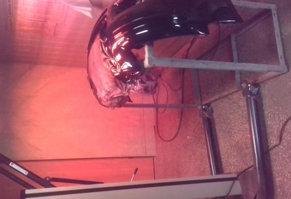 promiennik do suszenia lakierów samochodowych
