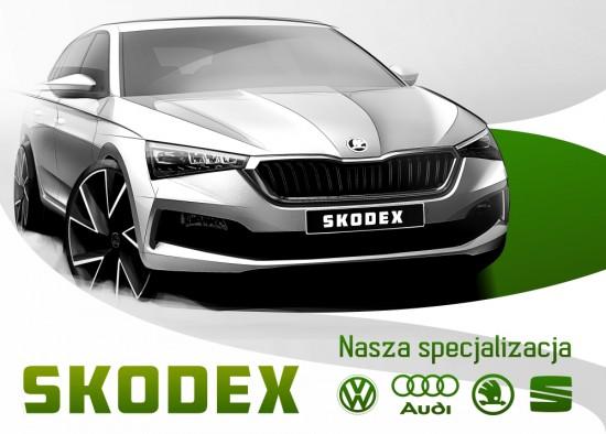 Skodex Auto Serwis Bytom