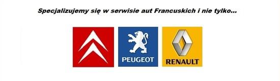 Między innymi specjalizacja aut francuskich i europejskich
