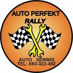 AUTO PERFEKT RALLY