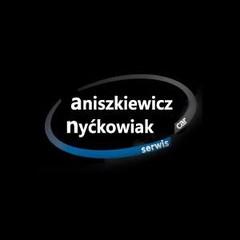Car Serwis Audi Vw Seat Skoda  Aniszkiewicz Nyćkowiak
