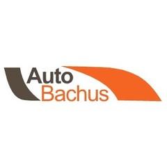 AUTO-BACHUS