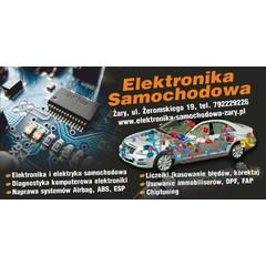 Elektronika Samochodowa Żary