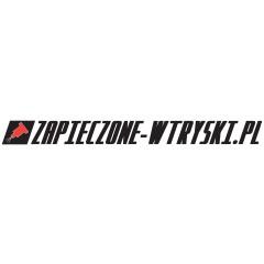 Zapieczone-wtryski.pl