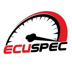 EcuSpec Łomża Chip tuning