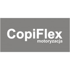 Instalacje gazowe LPG CopiFlex Mechanik Lakiernik
