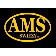 AMS Swiezy Strange Service