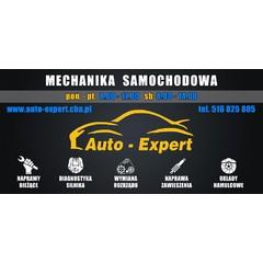 AUTO-EXPERT