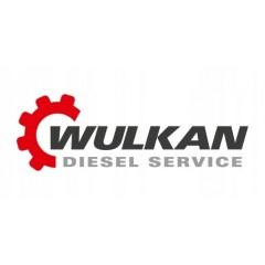 Wulkan Bosch Diesel Service