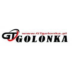 GT GOLONKA Sp. z o.o. Sp. k.