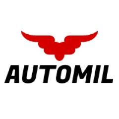 Serwis samochodowy AUTOMIL